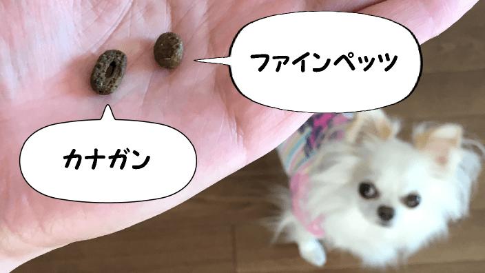 ファインペッツとカナガンの粒の大きさ比較